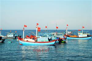 Bảo hiểm thân tàu cá